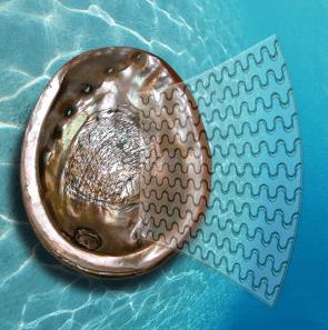 Cristales ultra resistentes gracias a la naturaleza