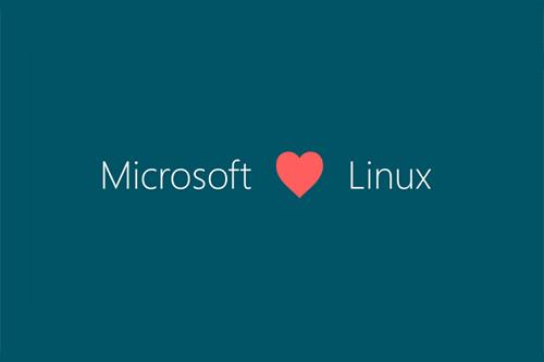 Se presentó al público un reciente acercamiento entre Linux y Microsoft