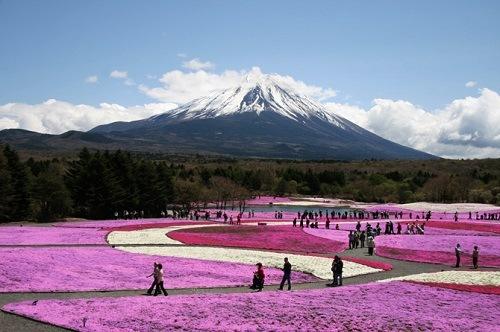Las pruebas se realizarán en las cercanías del Monte Fuji