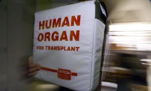 Donmación de órganos