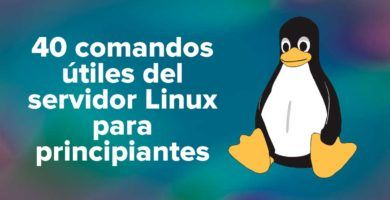 40 comandos útiles del servidor Linux para principiantes