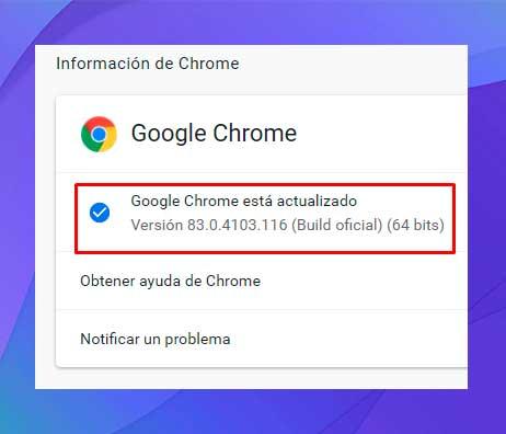 En el panel derecho, encontrarás la opción de actualizar Chrome