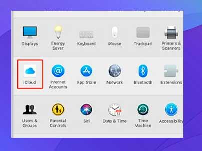 Selecciona iCloud