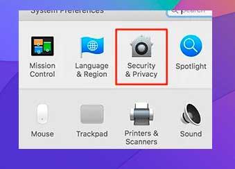 Seleccione la opción Seguridad y privacidad