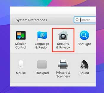 Seleccione la opción que dice Seguridad y privacidad
