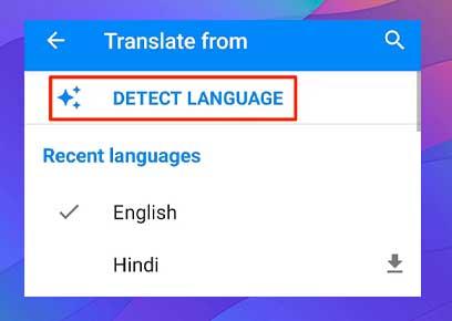 Usar Google Translate como diccionario