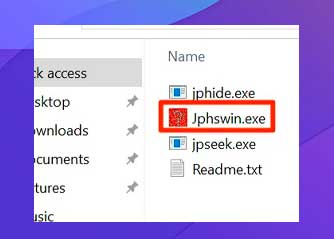 aplicación JPHS para Windows
