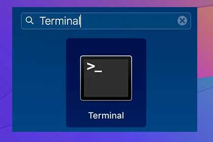 clic en Launchpad en el Dock, busque Terminaly ábralo