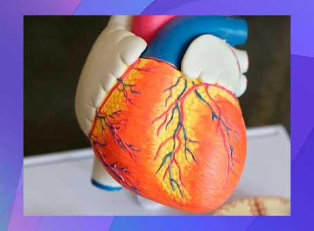 sedentarismo Aumentar las probabilidades de enfermedades cardíacas
