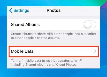 Seleccione la opción Datos móviles